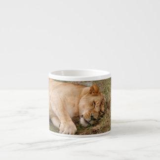 Barbary Lion-nap-023 Espresso Mug