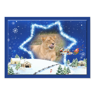 Barbary Lion-Nap-c-132 copy Card