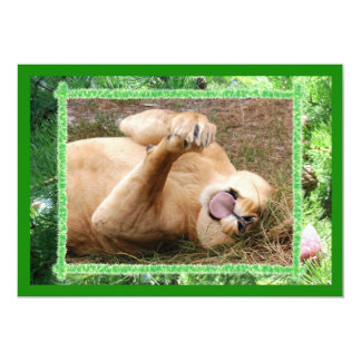Barbary Lion-Nap-c-19 copy Card