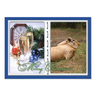 Barbary Lion-Nap-c-30 copy Card