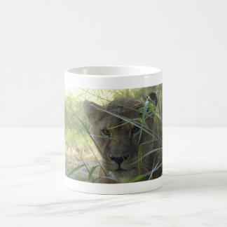 Barbary Lion-set-1-002 Coffee Mug