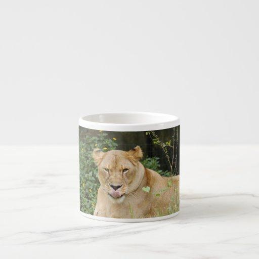 Barbary Lion-set-1-005 Taza Espresso