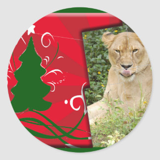Barbary Lion-Set 1-c-13 copy Classic Round Sticker