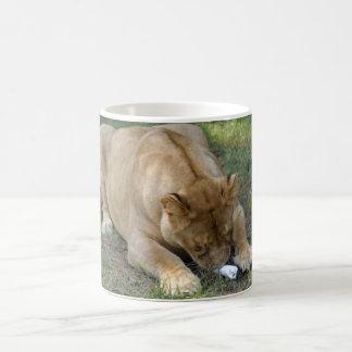 Barbary Lion-toy-001 Coffee Mug