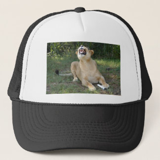 Barbary Lion-toy-004 Trucker Hat