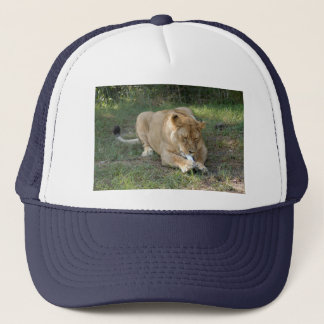 Barbary Lion-toy-005 Trucker Hat