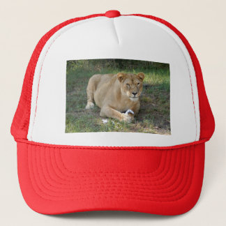 Barbary Lion-toy-009 Trucker Hat