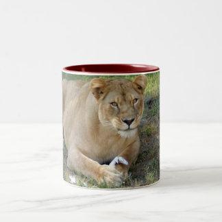 Barbary Lion-toy-009 Two-Tone Coffee Mug
