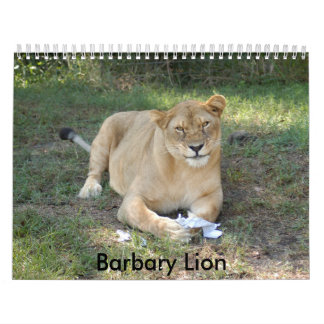 Barbary Lion-toy-010, Barbary Lion Calendar