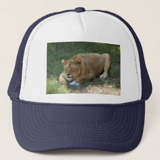 Barbary Lion-toy-016 Trucker Hat