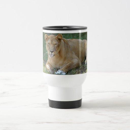 Barbary Lion-toy-017 Tazas De Café