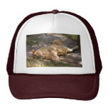 Barbary Lion-toy-021 Trucker Hat