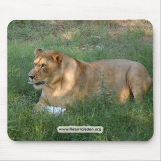 Barbary Lion-toy-023 Mouse Pad