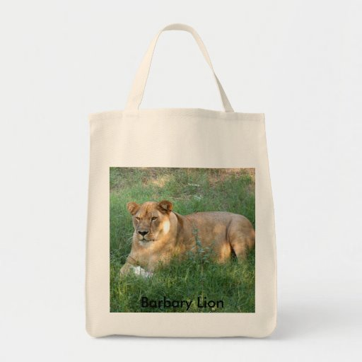 Barbary Lion (toy)-025, Barbary Lion Tote Bag