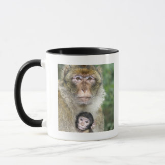 Barbary Macaque . Adulte with babyMacaca Mug