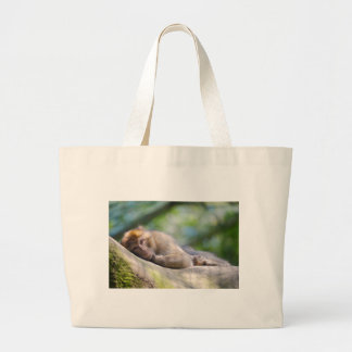Barbary macaque lying large tote bag