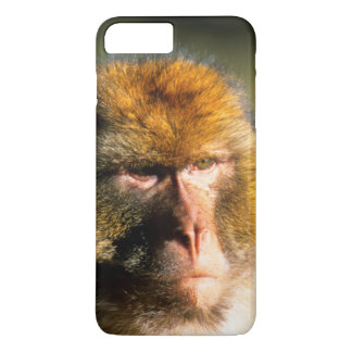 Barbary Macaque (Macaca Sylvanus) Portrait iPhone 8 Plus/7 Plus Case