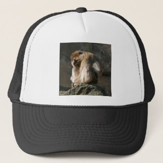 Barbary Macaque Trucker Hat