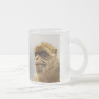 Barbary Macaques in Gibraltar Monkey Face Frosted Glass Coffee Mug