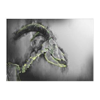 Barbary skeleton Sheep - Goat art