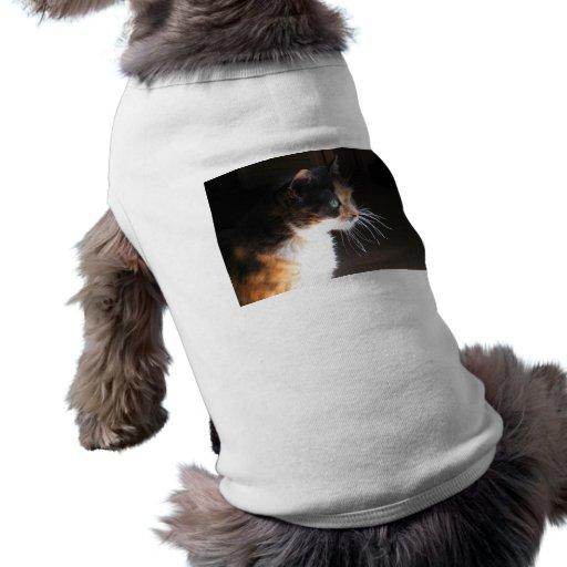 Barbas del gato de calicó playera sin mangas para perro