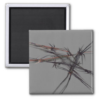 Barbed 2 Inch Square Magnet