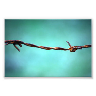 barbed WIRE AGAINST SKY BLUE BACKGROUND RANDOM ABS Photo Art