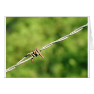 Barbed Wire, Barbed, Wire, Fencing Greeting Card