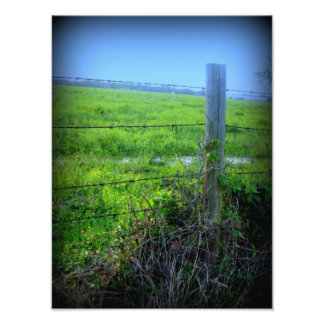 Barbed Wire Fence Photo Art