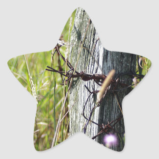 Barbed wire fence post star sticker