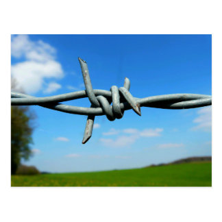 Barbed-Wire Fence Postcard