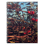 barbed wire fence spiral notebooks