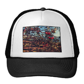 barbed wire fence trucker hat