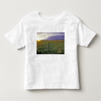 Barbed Wire Fenceline in northeastern Montana T-shirt