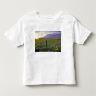 Barbed Wire Fenceline in northeastern Montana Toddler T-shirt