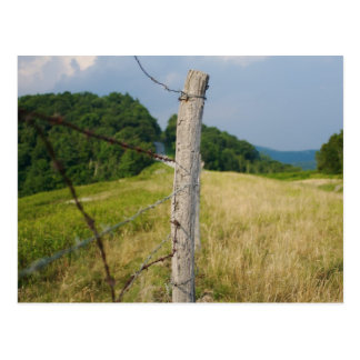 Barbed Wire Fencepost Postcard
