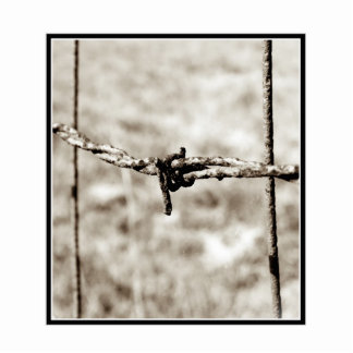 Barbed Wire Fencing (Sepia) Cut Outs