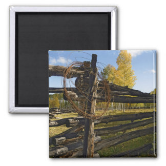 Barbed Wire 2 Inch Square Magnet