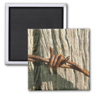 barbed wire magnet
