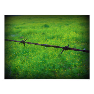 Barbed Wire Photo Art