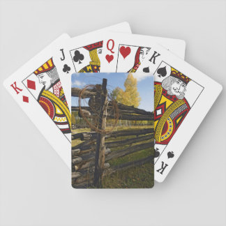 Barbed Wire Playing Cards