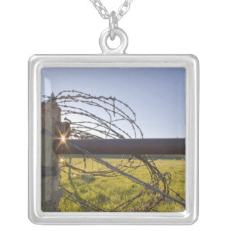 Barbed wire rolled up on fencerow near silver plated necklace