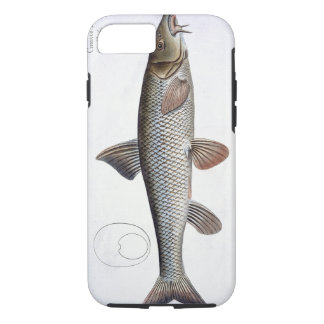 Barbel (Cyprinus Barbus) plate XVIII from 'Ichthyo iPhone 8/7 Case