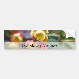 Barberry Flowers Bumper Sticker