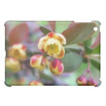 Barberry Flowers Case For The iPad Mini