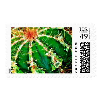 """Barbs"" JTG Art Postage Stamp"
