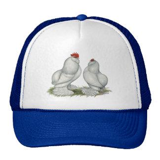Barbu d Everberg Chickens Hats