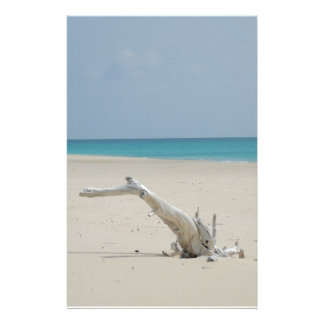 Barbuda Driftwood Beach Stationery Paper