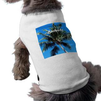 Barbuda Palm Dog Clothes