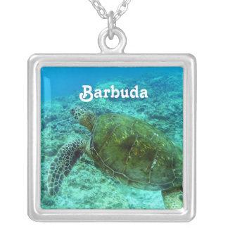 Barbuda que bucea colgante cuadrado